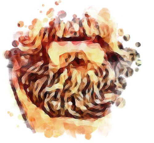 Widespread Beard style